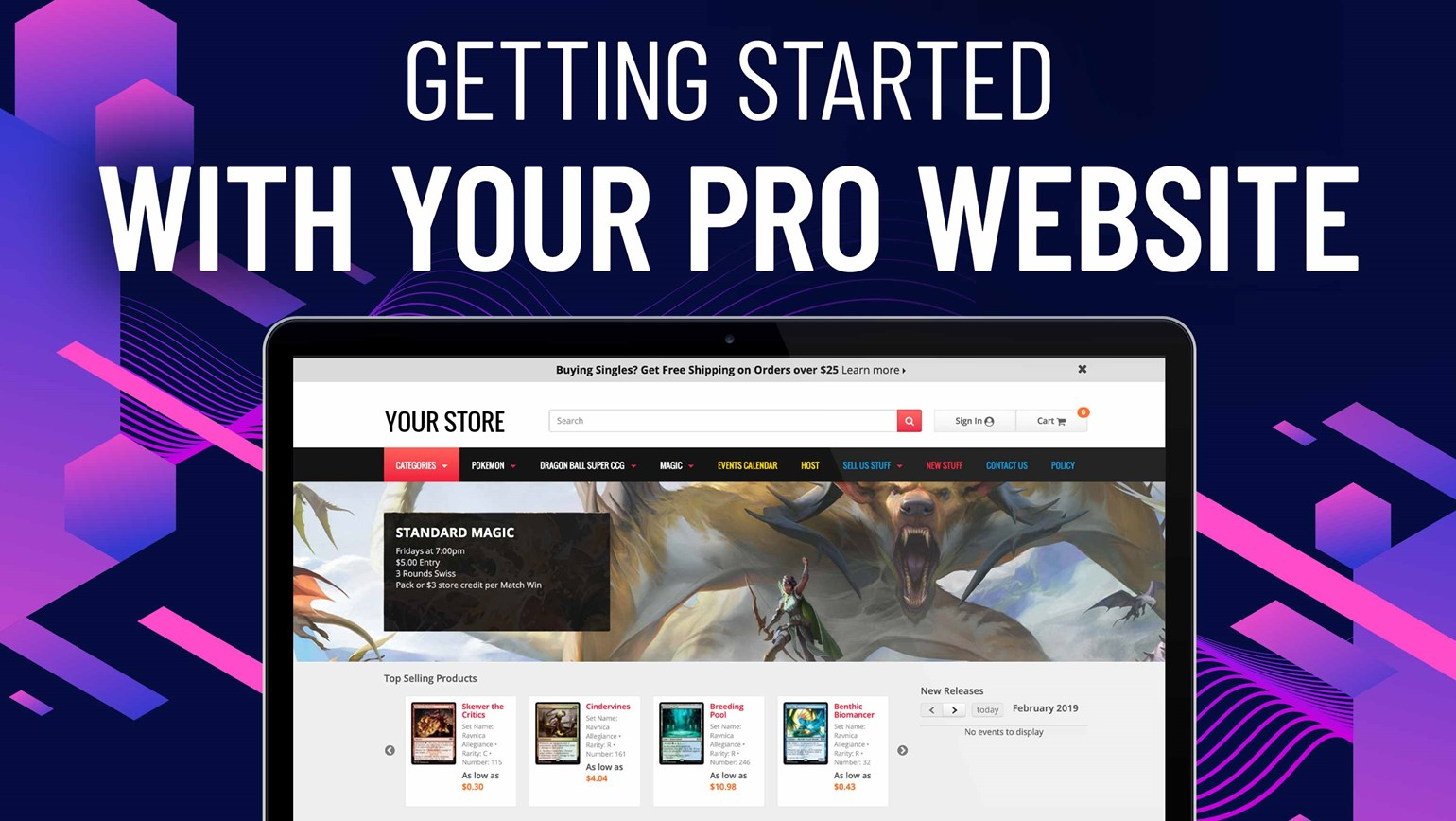 Getting Started with Your Pro Website